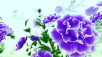 中国风水墨紫色牡丹循环动画