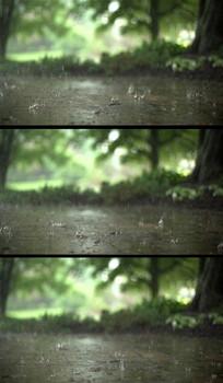 林中的雨滴实拍慢镜头视频