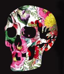 时尚骷髅填花图案