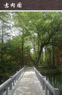 石质亲水小桥