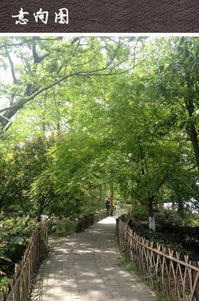 自然公园园路铺装