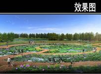 渭河景观规划湿地体验效果图 JPG