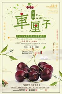 小清新车厘子水果促销海报