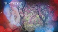 彩色浪漫光斑婚礼片头视频模板