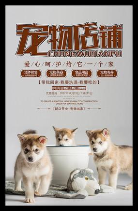 宠物店铺海报设计