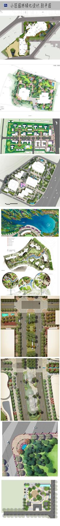 园林绿化规划设计彩平 PSD