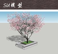 精美广场植物树池SU