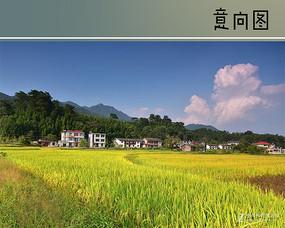 田园乡村风景