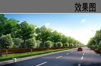 道路绿化效果图 JPG