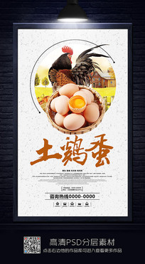 大气土鸡蛋海报设计