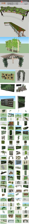 藤蔓植物SU模型