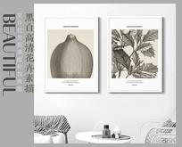 黑白高清花卉素描装饰画