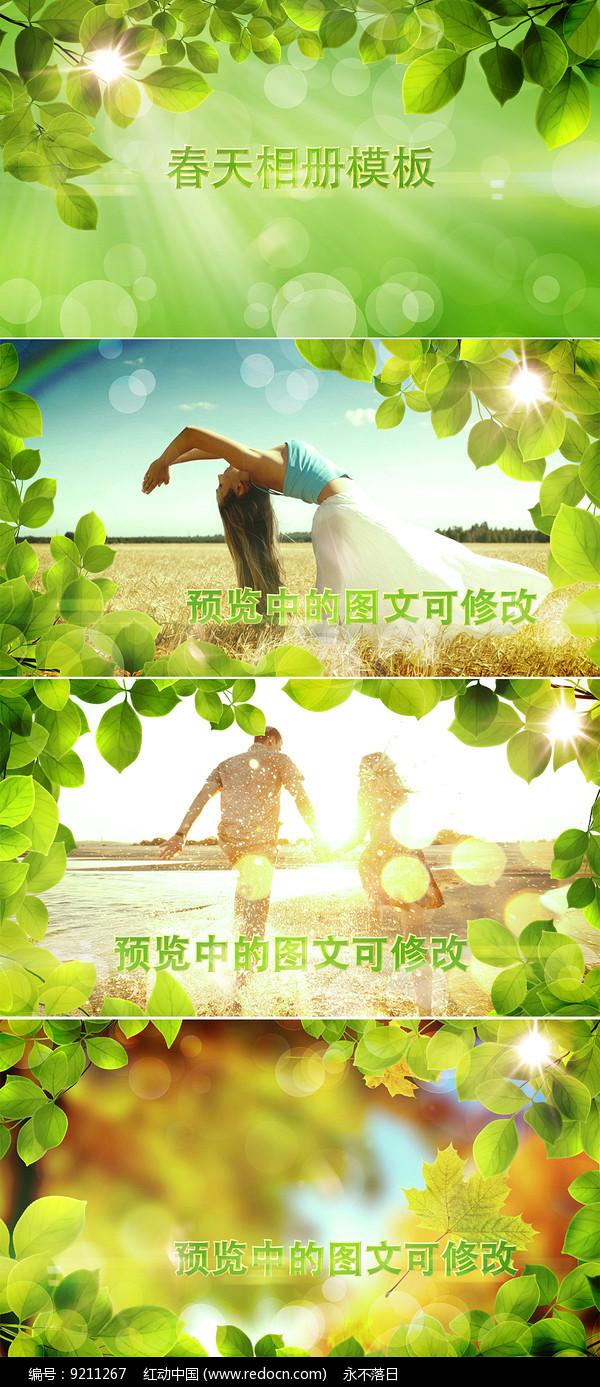 绿叶边框春天相册ae模板 图片