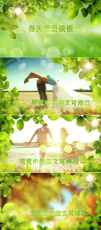 绿叶边框春天相册ae模板