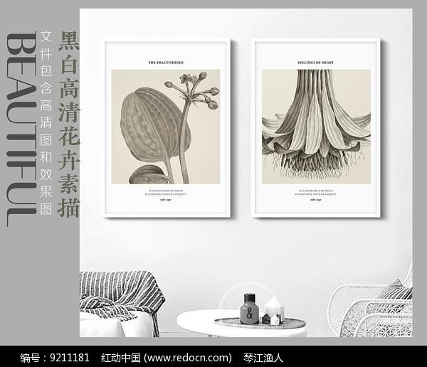 清新花卉装饰画图片