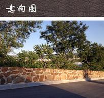 不规则块石矮墙 JPG
