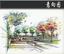 森林公园景观现在植物公园手绘