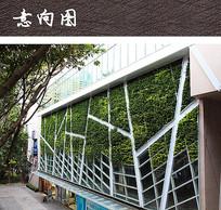 建筑立面绿化装饰