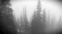 雾霾天视频