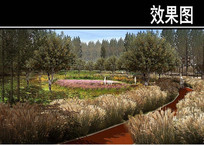 某城市迎宾路雨水花园效果图 JPG