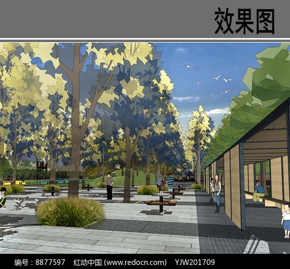 某运河公园林下广场效果图图片