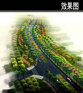 上海某道路景观绿化带鸟瞰图