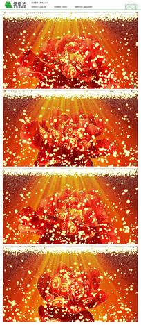 中国风盛世牡丹花开视频