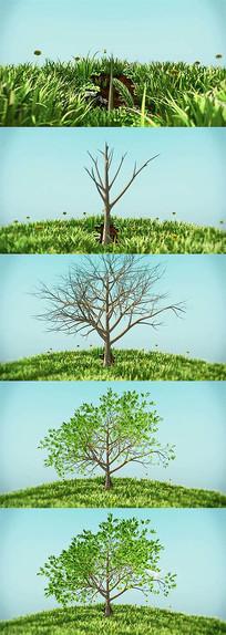 3D大树生长视频动画
