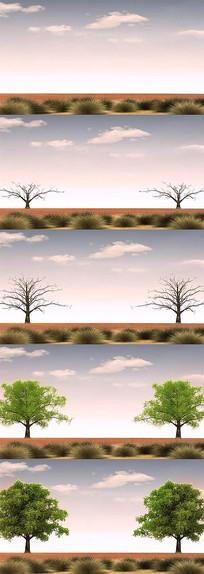 沙漠树木生长动画视频
