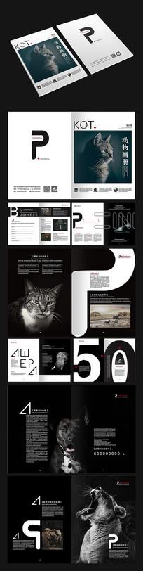 动物保护画册