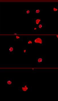 带通道玫瑰花瓣视频素材