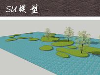 湿地植物景观SU