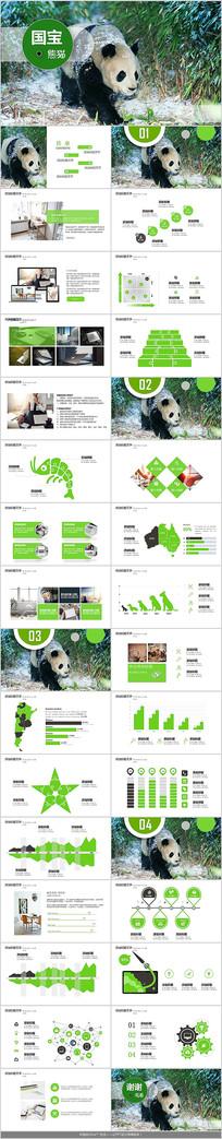 野生动物国宝熊猫PPT模板