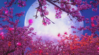 月亮代表我的心歌曲配乐成品