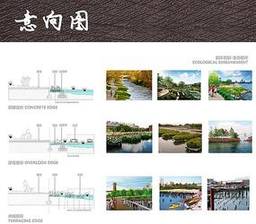 生态驳岸设计