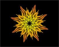 矢量火焰花朵