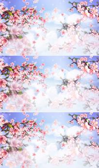 唯美三生三世桃花盛开LED视频