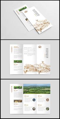 家禽养殖企业宣传三折页设计