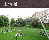 构筑栈桥景观 JPG