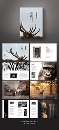 简雅创意保护动物公益宣传画册
