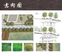 休闲步道景观分析图