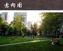 休闲大草坪景观 JPG
