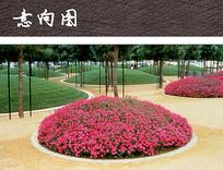 圆形花坛公园景观 JPG