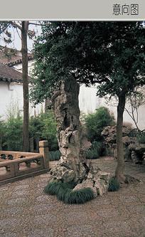 假山石 JPG