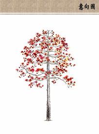 观赏树ps手绘素材