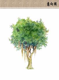 榕树手绘立面ps素材 PSD