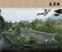 茶园景观效果图