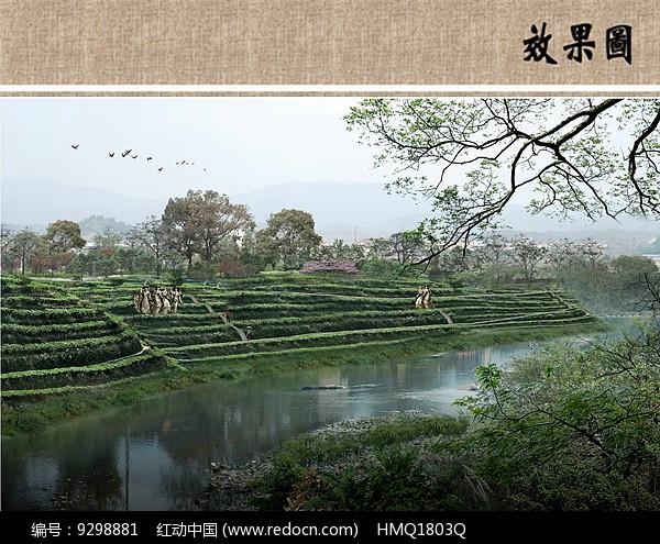 茶园景观远景效果图图片