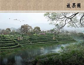 茶园景观远景效果图