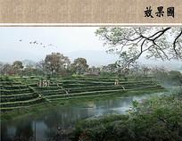 茶园景观远景效果图 JPG